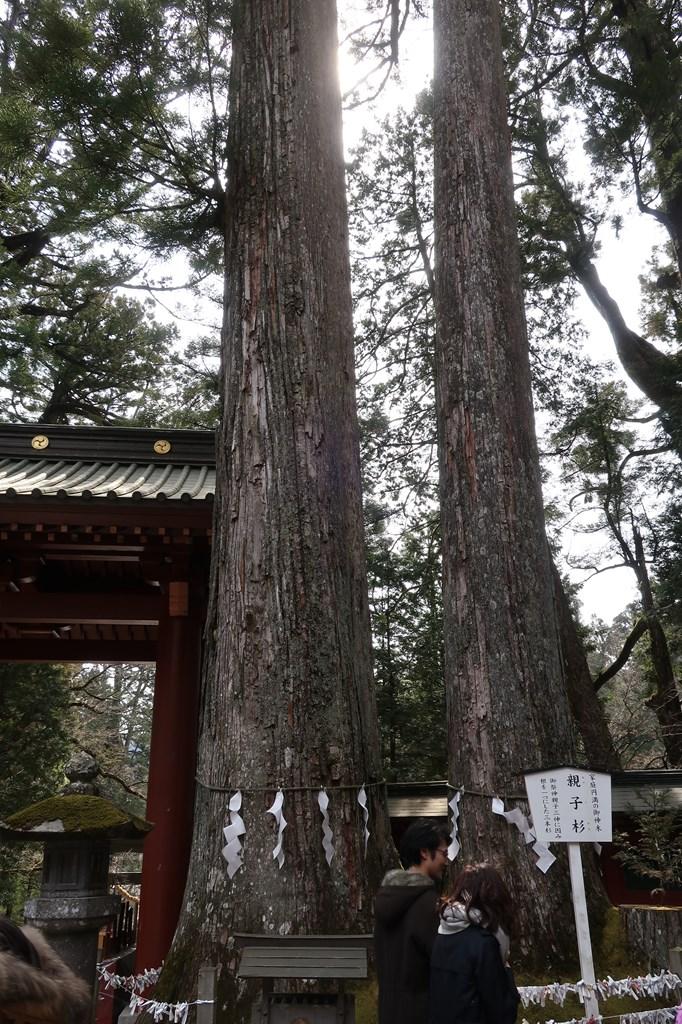 日光 世界遺産 二荒山神社