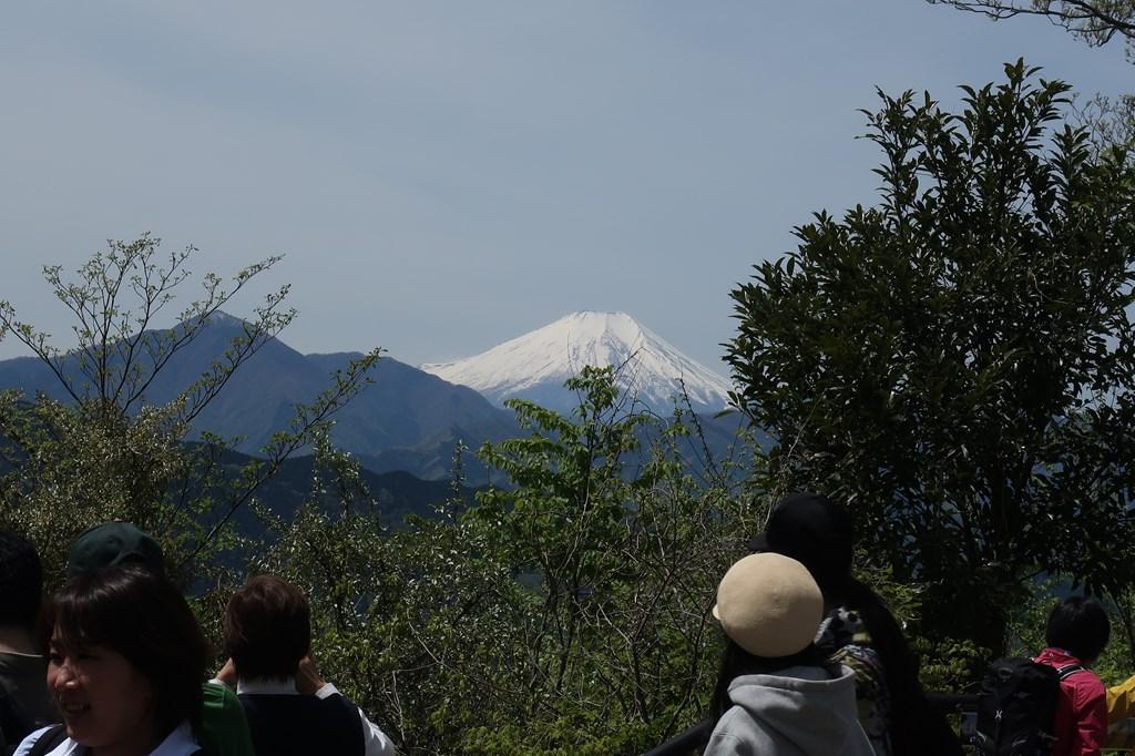 高尾山 ハイキング