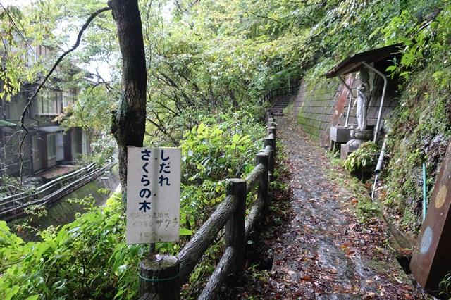 板室温泉 温泉神社 大黒屋
